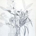 Nicole Pluim Stilleven Vaas met bloemen in potlood