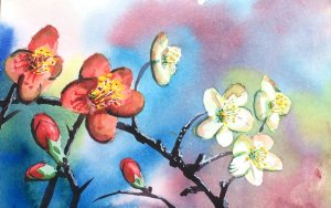 Nicole Pluim Aquarel bloemen