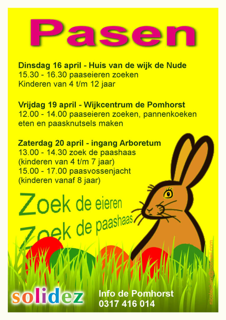 Solidez Pasen Flyer door Nicole Pluim